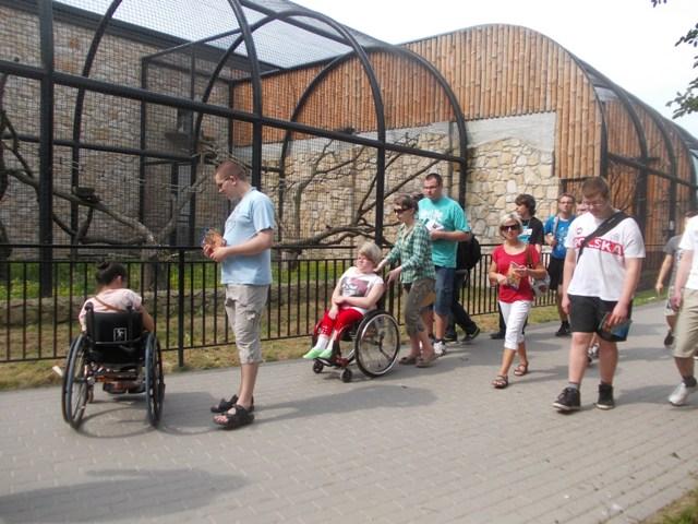 1ti w zoo